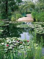 北川村「モネの庭」マルモッタン・写真