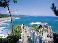桂浜・写真
