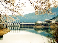 早明浦湖畔・写真