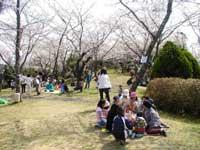 為松公園・写真