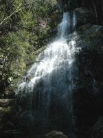お菊の滝・写真