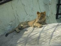 福岡市動植物園・写真