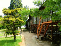 雷山国際キャンプ場・写真
