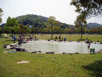 山田緑地・写真