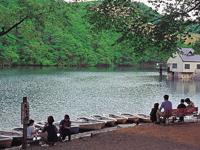 長老湖・写真