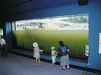 水環境館・写真