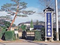 山王史跡公園あやめ園・写真