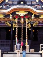 大崎八幡宮・写真