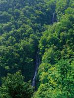 滝見台・写真