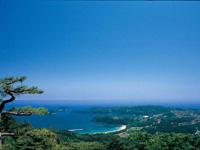大島・写真