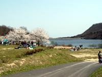 達居森と湖畔自然公園キャンプ場・写真