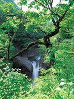 鳳鳴四十八滝・写真