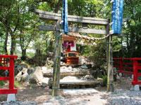 猫神社・写真