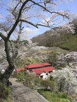 鎌倉温泉・写真