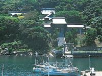 田島神社・写真