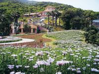 長崎県亜熱帯植物園・写真