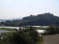 日野江城跡・写真