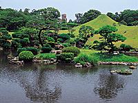 水前寺成趣園・写真
