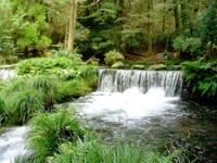 池山水源・写真