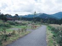 九重グリーンパーク泉水キャンプ村・写真
