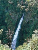 西椎屋の滝・写真