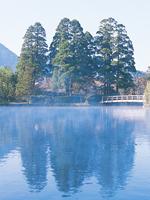 金鱗湖・写真