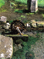 泉水湧水・写真