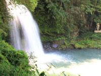 慈恩の滝・写真