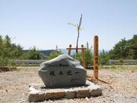 諸塚山スカイライン・写真