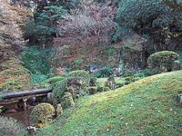 妙国寺庭園・写真