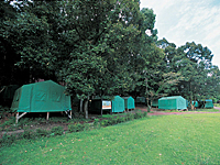 御池野鳥の森公園キャンプ村・写真