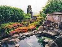 極楽温泉・写真
