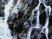 玉垂の滝・写真