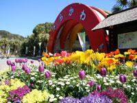 鹿児島市平川動物公園・写真