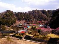 清流の森大川原峡キャンプ場・写真