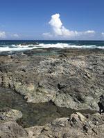 屋久島町の枕状溶岩・写真