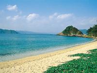 ヤドリ浜・写真