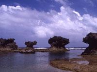ウジジ浜・写真