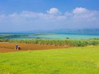 小浜島・写真
