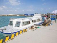 南西観光 グラスボート竹富島海底遊覧