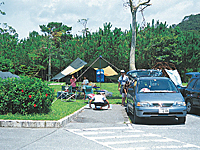 沖縄県県民の森・写真