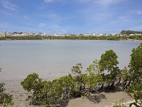 漫湖水鳥・湿地センター・写真