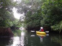 カヌーツーリングGreen River