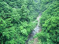 三途川渓谷・写真