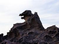 ゴジラ岩・写真