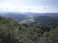 山形県源流の森・写真