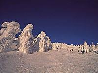 樹氷・写真