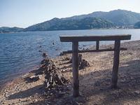 大山祗神社の鳥居・写真