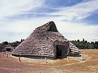 上高津貝塚ふるさと歴史の広場・写真