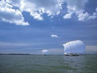 観光帆曳船(体験)・写真